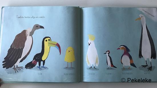 Pájaro Amarillo (2)