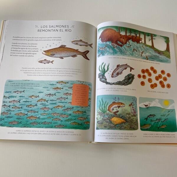 Con calma. 50 historias de la naturaleza (3)